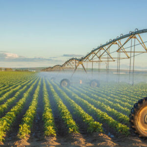 Сельскохозяйственная мелиорация e1603902883778 Материалы научно-исследовательских работ в АПК