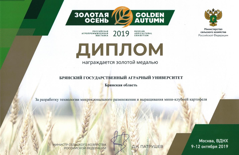 E:\Золотая осень\золотая осень 2019\дипломы\1 - 0002.jpg