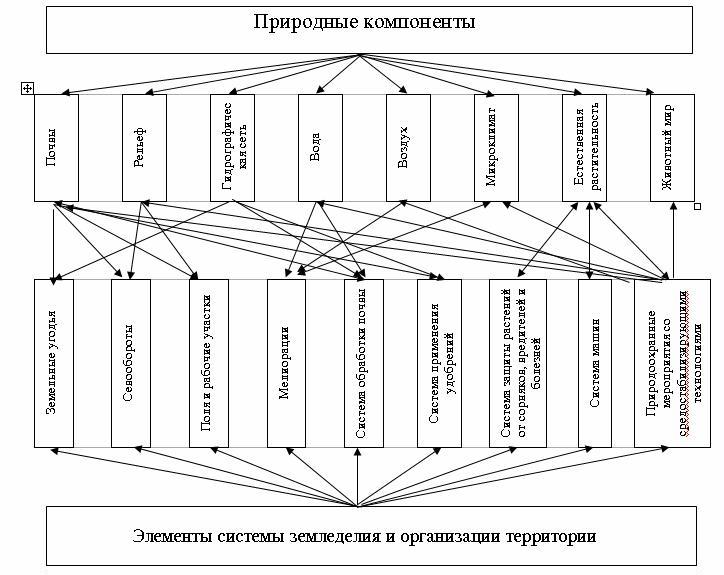Структура агроландшафта