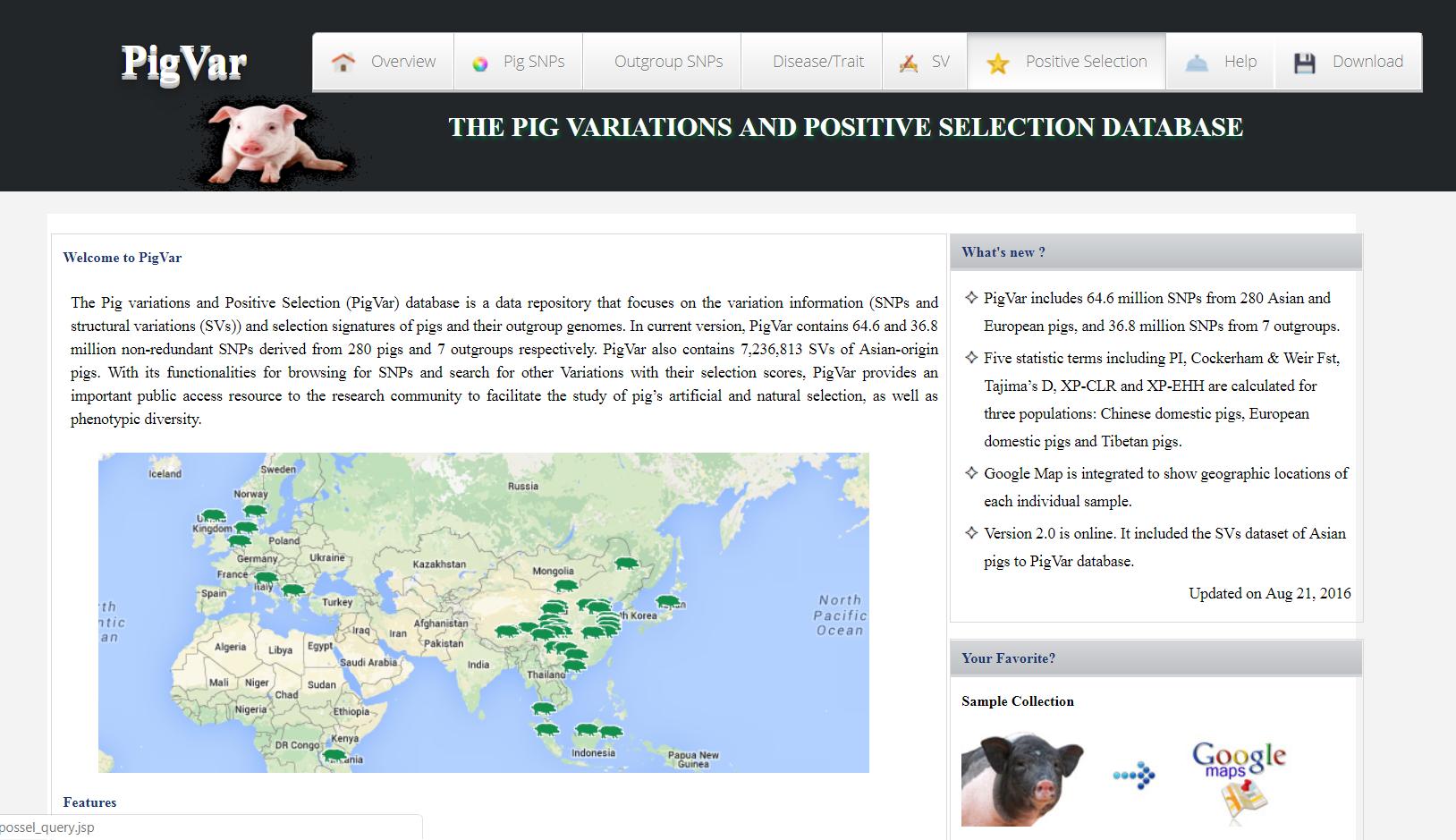 word image 806 Разработка модели интеграции результатов генетической экспертизы национальных племенных ресурсов с мировыми информационными ресурсами геномных данных в контексте задачи создания отечественной системы геномной оценки сельскохозяйственных животных