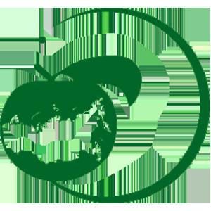 01 Использование цифровых технологий для производства, оценки урожая, сбора, хранения сельскохозяйственной продукции (в т.ч. индекс NDVI)