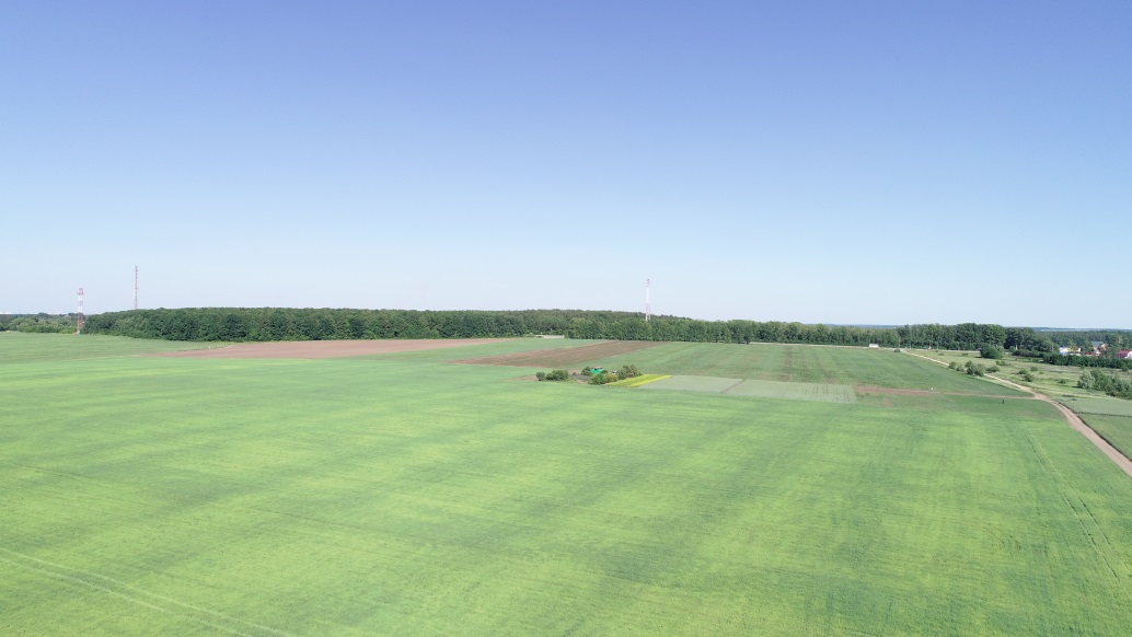 D:\работа\наука\2015 умник\2019\по минсельхозу\полевой опыт\6 июня 19\Аэрофотосъемка Стенькино 06.06.19\DJI_0022.JPG