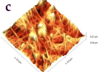 E:\Целюлоза 12март19\фосфат кальция\Фосфат кальция-3.1-3d-c.jpg