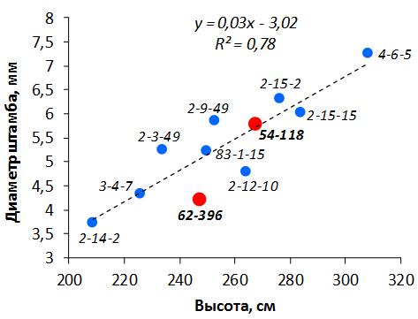 word image 123 Селекция зимостойких слаборослых клоновых подвоев яблони с использованием молекулярных маркеров