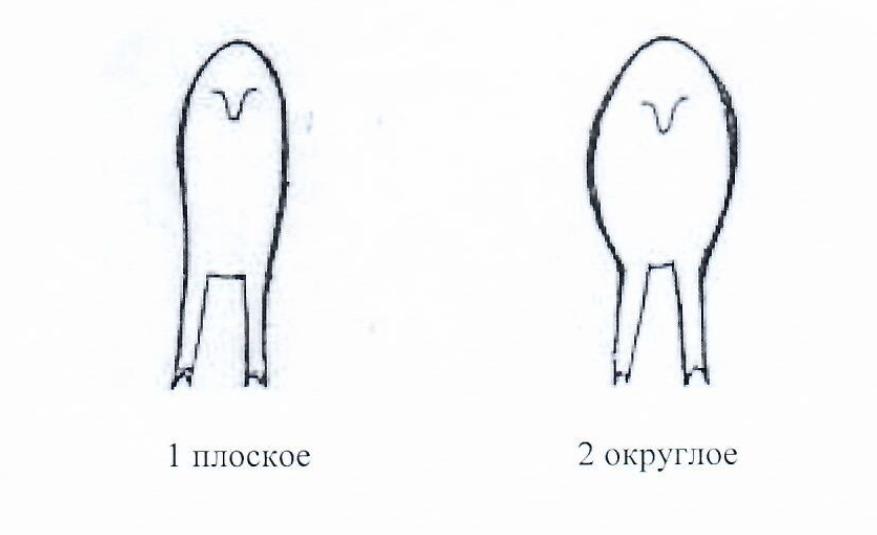 word image 1292 Создание нового высокопродуктивного конкурентоспособного шерстно-мясного типа тонкорунных овец кавказской породы, адаптированного к засушливым условиям Заволжья