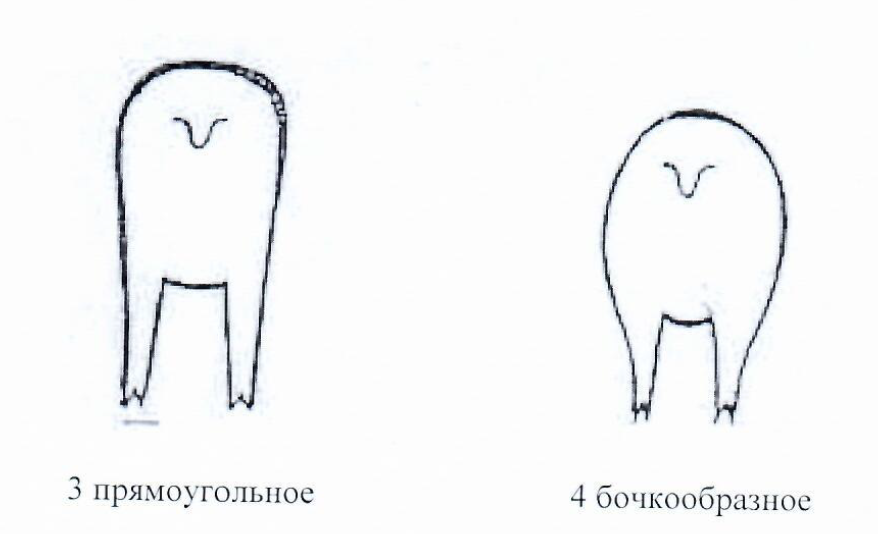word image 1293 Создание нового высокопродуктивного конкурентоспособного шерстно-мясного типа тонкорунных овец кавказской породы, адаптированного к засушливым условиям Заволжья