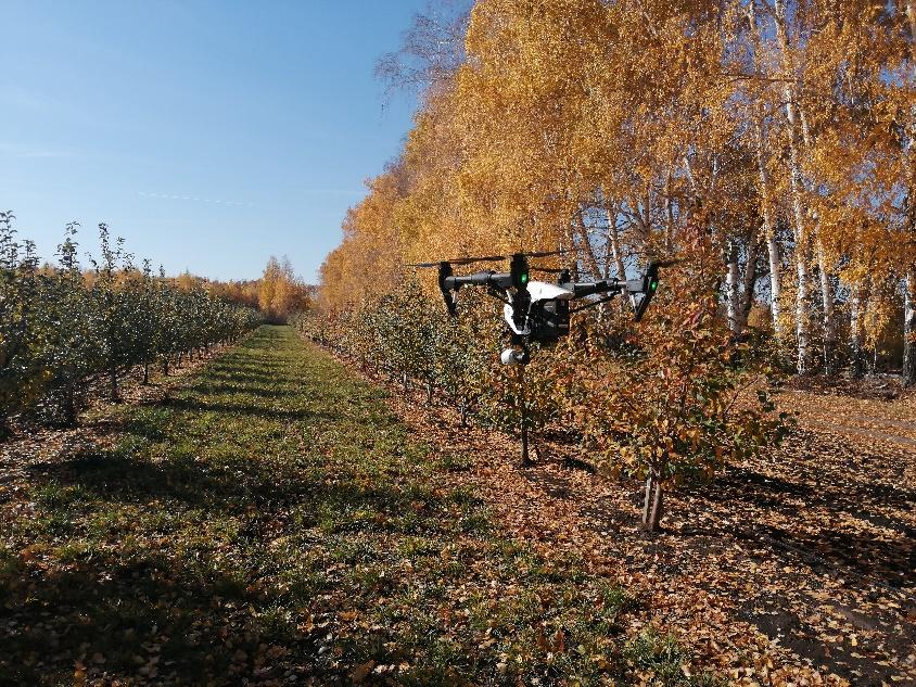 word image 13 Использование цифровых технологий для производства, оценки урожая, сбора, хранения сельскохозяйственной продукции (в т.ч. индекс NDVI)