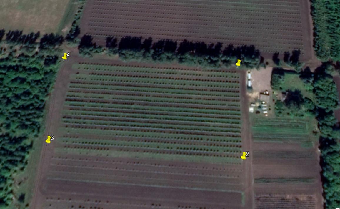 word image 172 Использование цифровых технологий для производства, оценки урожая, сбора, хранения сельскохозяйственной продукции (в т.ч. индекс NDVI)
