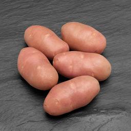 word image 180 Исследование методов и средств биологизации технологии производства оригинального семенного картофеля с использованием биопрепаратов и сидеральных культур