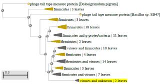 word image 1951 Разработка экологически чистого инновационного фагового биопрепарата для снижения и/или предотвращения порчи плодоовощной продукции