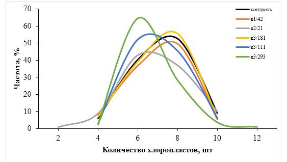 word image 204 Разработка методов индукции полиплоидии картофеля in vitro