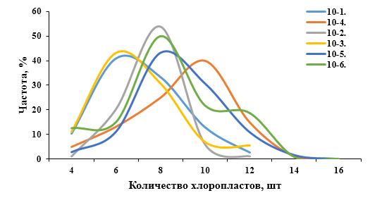 word image 207 Разработка методов индукции полиплоидии картофеля in vitro