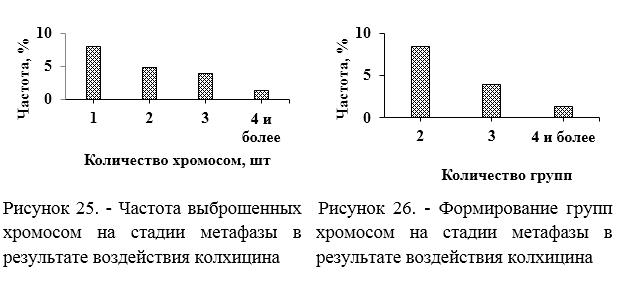 word image 215 Разработка методов индукции полиплоидии картофеля in vitro