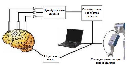 word image 462 Разработка концепции по развитию экспериментального цифрового опытного хозяйства, создаваемого на базе высшего образовательного учреждения (на примере Орловского ГАУ)