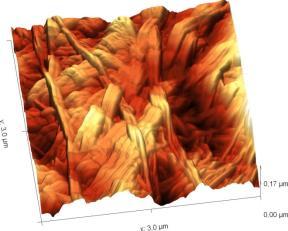 word image 54 Разработка наноматериала, биосовместимого с органами и тканями животных для применения в лечении ожоговых ран и эндогенной имплантации трубчатых органов