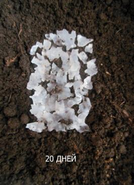 word image 582 Разработка новых приемов создания экологически безопасного материала на основе растительного сырья и отходов сахараперерерабатываюей промышленности