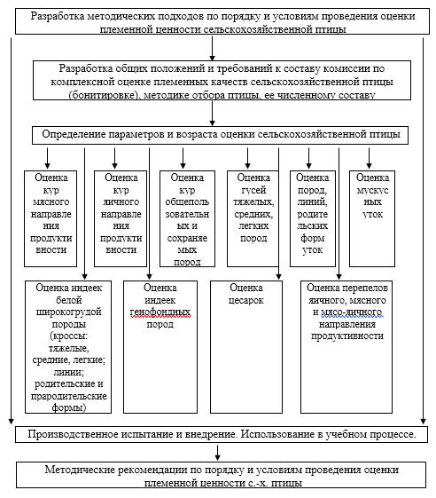 word image 593 Разработка методических подходов по порядку и условиям проведения оценки племенной ценности сельскохозяйственной птицы