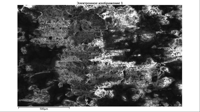 word image 861 Комплексное эколого-химическое обследование по международным стандартам «Органик» хозяйства - экспортера и обоснование целесообразности производства органической продукции в условиях юга России