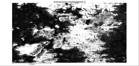 word image 879 Комплексное эколого-химическое обследование по международным стандартам «Органик» хозяйства - экспортера и обоснование целесообразности производства органической продукции в условиях юга России