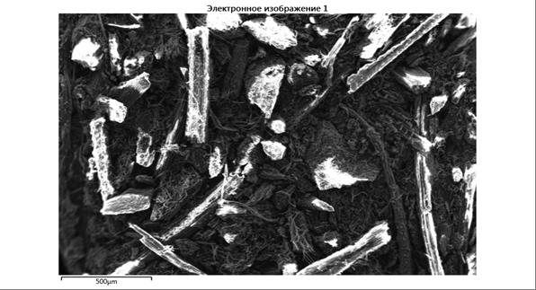 word image 911 Комплексное эколого-химическое обследование по международным стандартам «Органик» хозяйства - экспортера и обоснование целесообразности производства органической продукции в условиях юга России