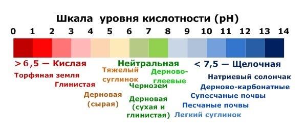 уровень кислотности для экспресс-мониторинга состава почв
