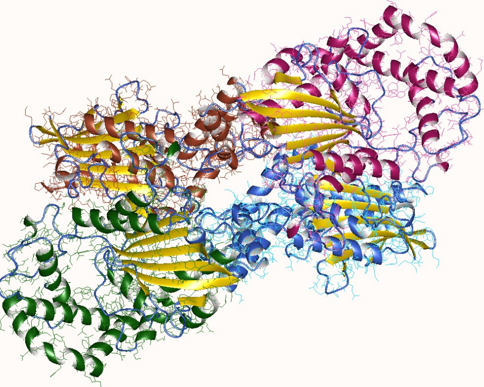 фосфатаза