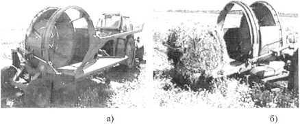 word image 29 Разработка технологии рециклизации растительных остатков с целью получения биологических средств, используемых в органическом земледелии