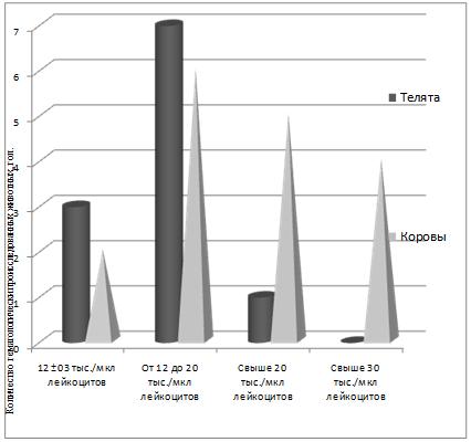 word image 383 Разработка ранней диагностики лейкоза крупного рогатого скота с целью усовершенствования системы оздоровления