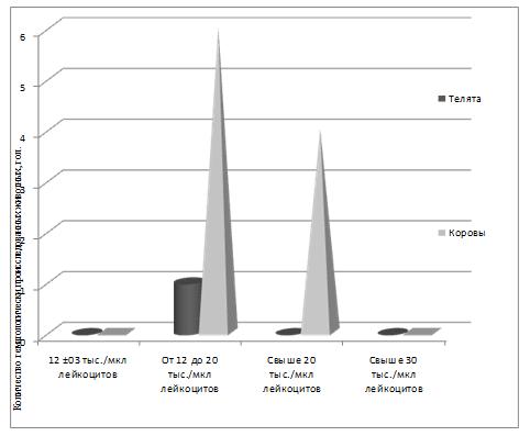 word image 384 Разработка ранней диагностики лейкоза крупного рогатого скота с целью усовершенствования системы оздоровления