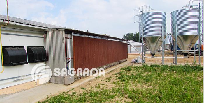 word image 547 Разработка инновационных технологий повышения продуктивности и качества продукции свиноводства