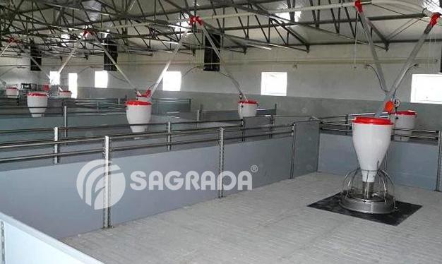 word image 560 Разработка инновационных технологий повышения продуктивности и качества продукции свиноводства
