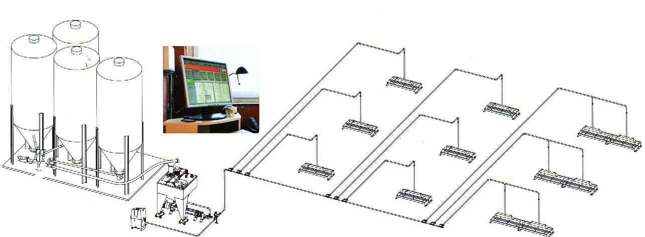 word image 563 Разработка инновационных технологий повышения продуктивности и качества продукции свиноводства