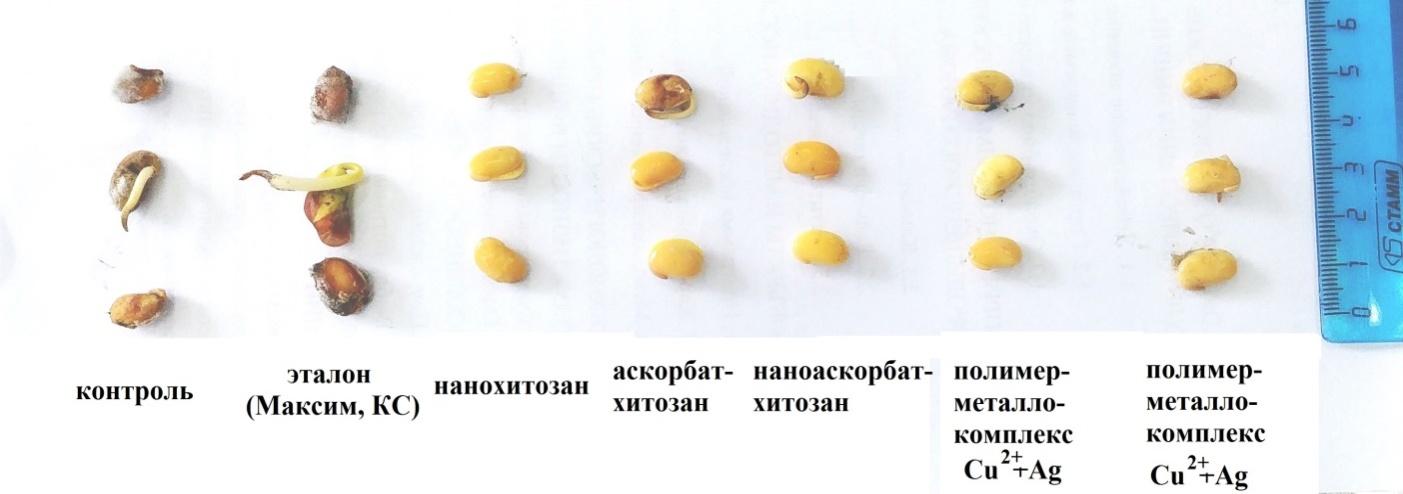 word image 78 Исследования, разработки и практические мероприятия по формированию интегрированной системы защиты растений с участием биологических методов, биологических удобрений, биостимуляторов, гуматов, препаратов микоризы