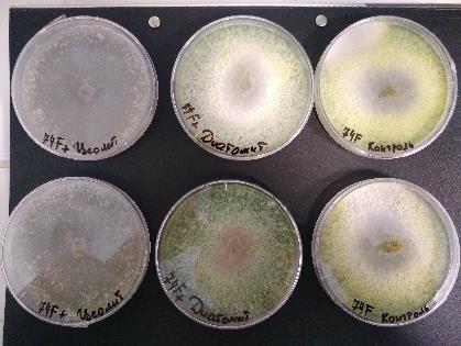 word image 83 Разработка препаратов биологического происхождения для защиты растений и оптимизации минерального питания в органическом земледелии