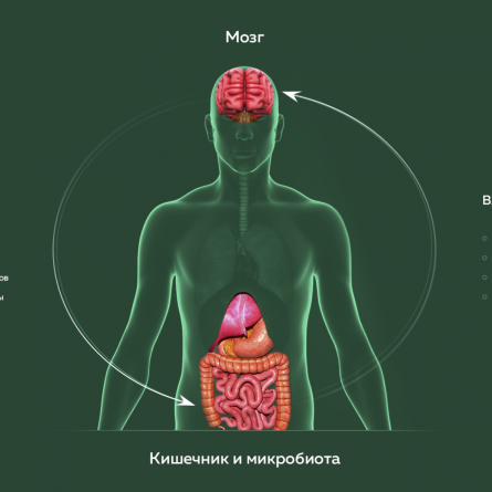 https://omskpress.ru/wp-content/uploads/2020/05/1-2.png