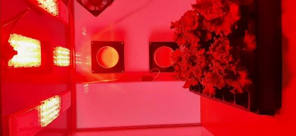 word image 115 Разработка комплекса энергосберегающих элементов технологии выращивания овощных культур в условиях высокотехнологичных культивационных сооружений