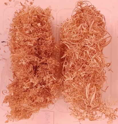 word image 47 Совершенствование технологии производства зеленных культур на рассадно-салатных комплексах зимних теплиц за счет применения почвогрунта на основе древесного волокна и автоматизации технологических процессов