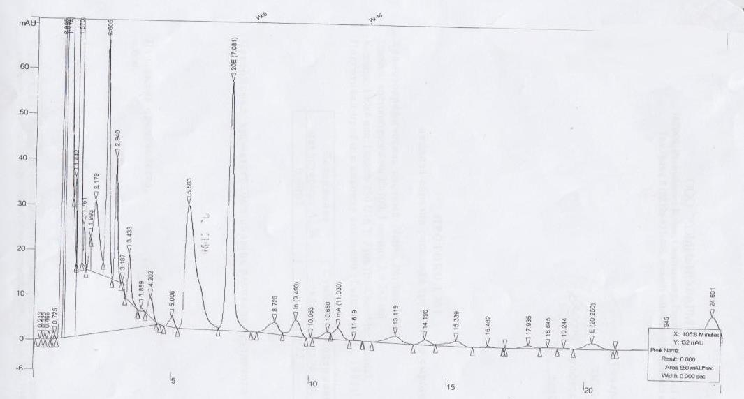 Хроматограмма трутневый расплод.jpg