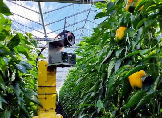 https://agro-exim.com/media/upload/sweeper_robot_greenhouse_web.jpg
