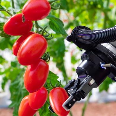 Сельскохозяйственные роботы BID Technologies