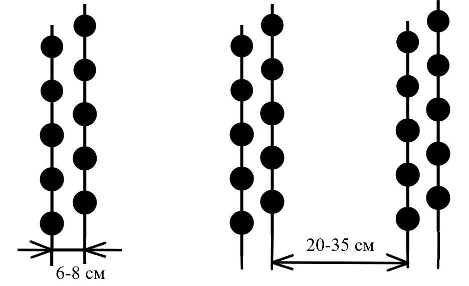 word image 174 Разработка конструктивной схемы и обоснование параметров почвообрабатывающего посевного агрегата с пневматическим высевом семян для тракторов класса тяги 5
