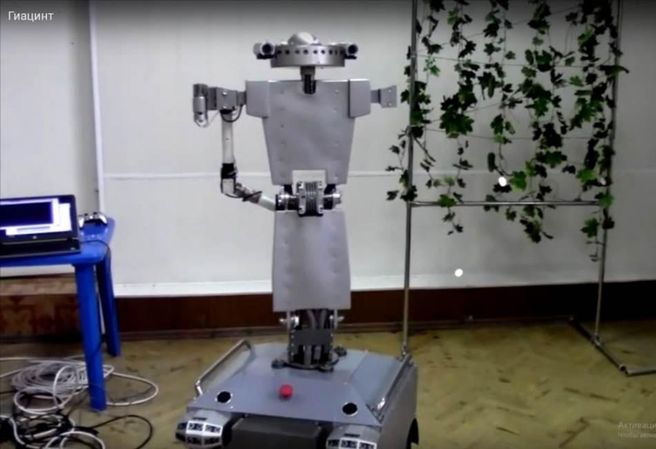 word image 50 Разработка роботизированной платформы и технологических приемов её применения для интегрированной защиты овощных растений защищённого грунта от болезней в рамках органического земледелия.