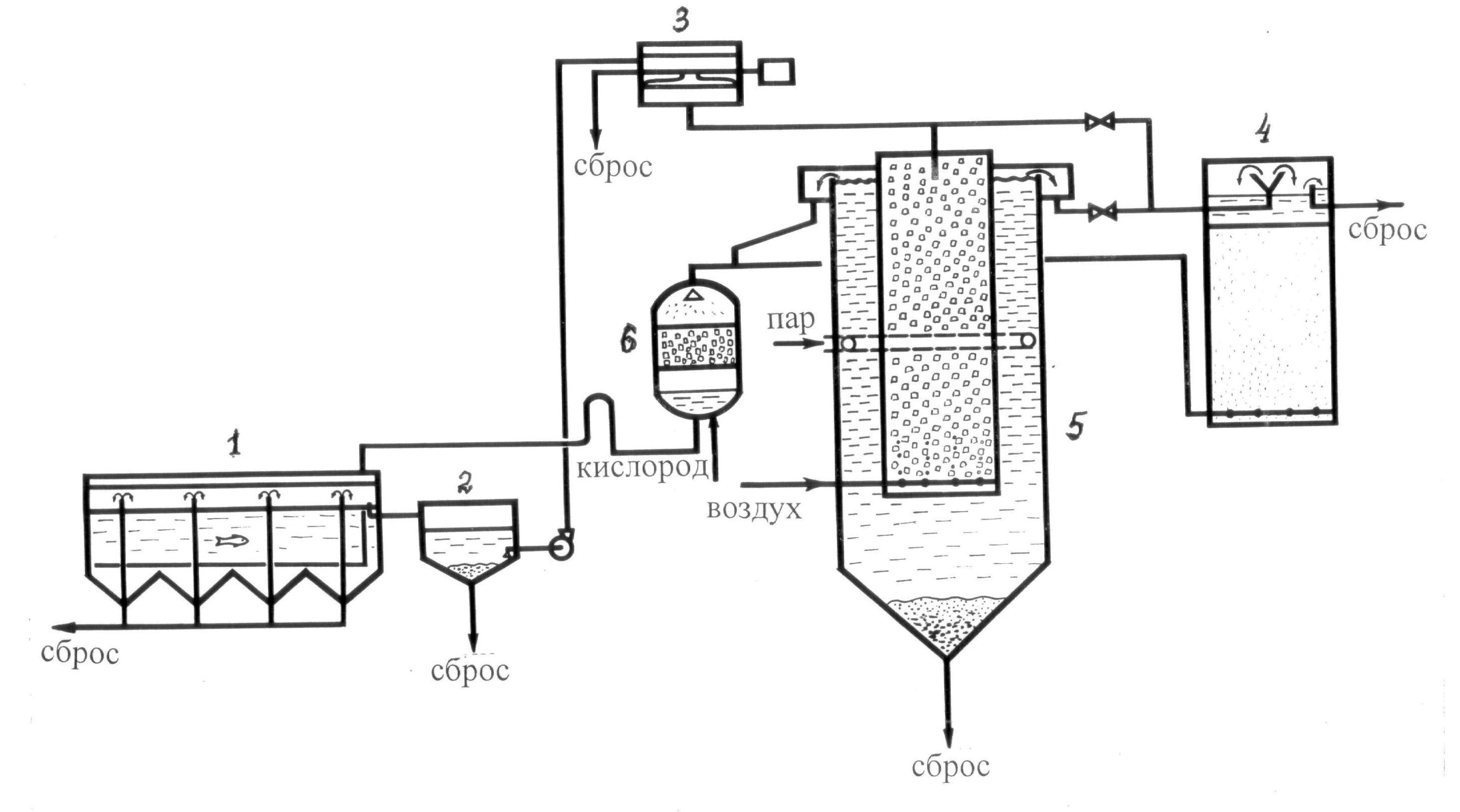 word image 628 Разработка инновационной биотехнологии производства экологически чистой рыбы, отвечающей требованиям продукта функционального питания, в высокотехнологичной индустриальной аквакультуре