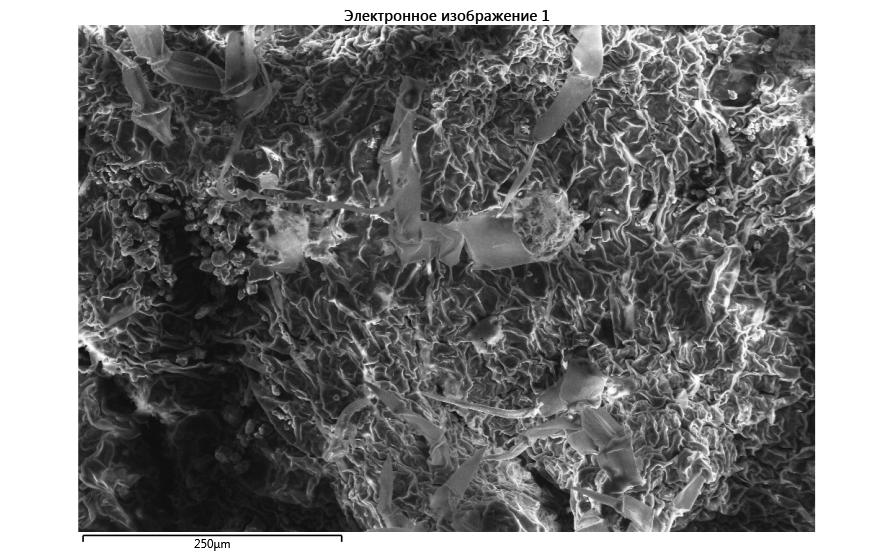 word image 682 Оценка влияния пространственного варьирования свойств почвы на продукционный процесс и качество продукции в севообороте хозяйства, аккредитованного по международным стандартам «Органик»