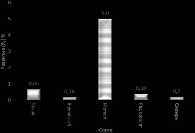 word image 697 Разработка и экспериментальная проверка рекомендаций технологий получения двух урожаев экологически чистого картофеля ранних сортов