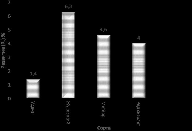 word image 699 Разработка и экспериментальная проверка рекомендаций технологий получения двух урожаев экологически чистого картофеля ранних сортов