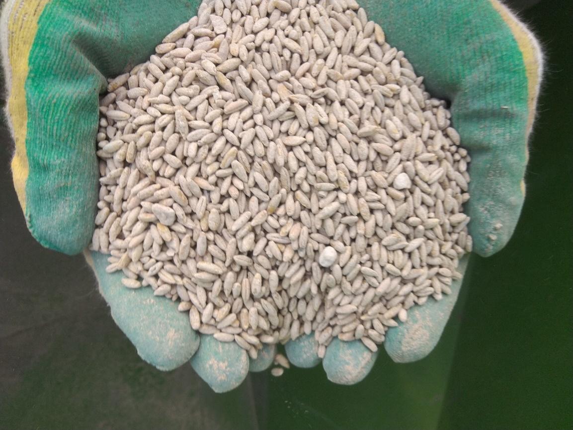word image 90 Разработка препаратов биологического происхождения для защиты растений и оптимизации минерального питания в органическом земледелии
