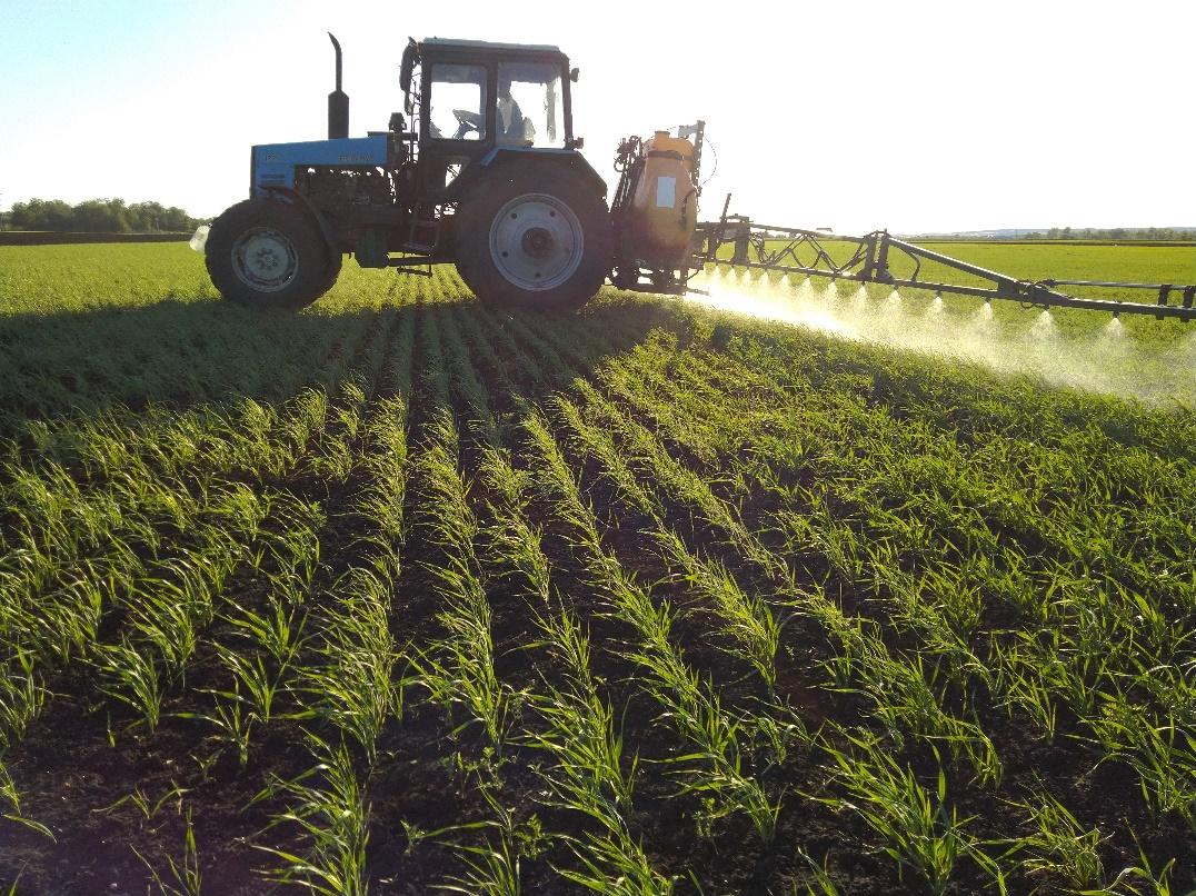 word image 95 Разработка препаратов биологического происхождения для защиты растений и оптимизации минерального питания в органическом земледелии